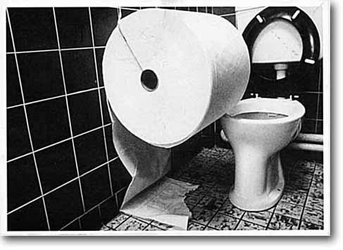 giant-toilet-roll